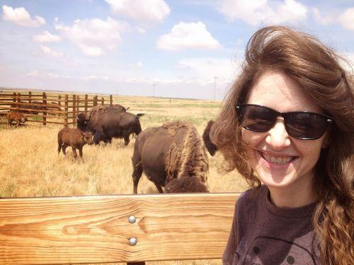 Buffalo? It IS post-apocalyptic!