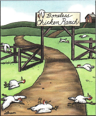 Boneless-chicken-ranch-far-side-247x300